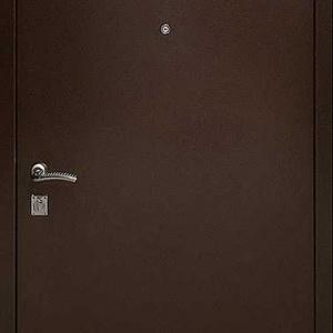 Порошковая дверь DR108